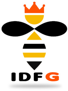 IDFG conseils astuces nid frelons europeens