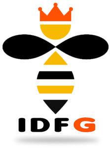 IDFG-nid-guepes-frelons-Dourdan-91