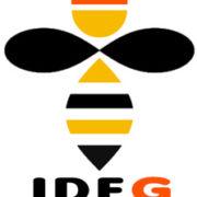 IDFG-nid-guepes-frelons-Jaulnes-77
